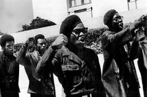 black-panthers-4
